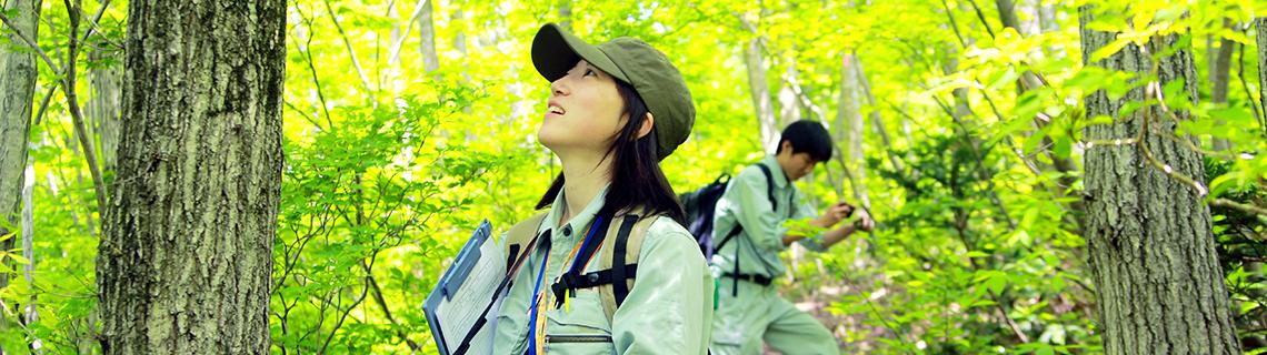 日本自然環境専門学校
